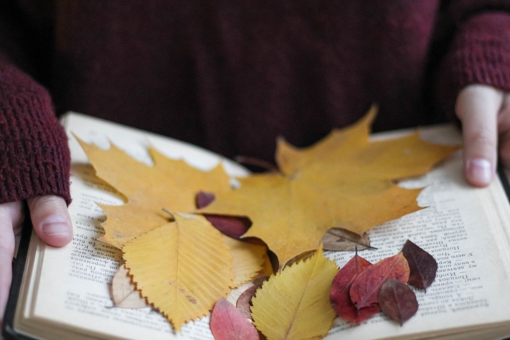 Leaves on an open book